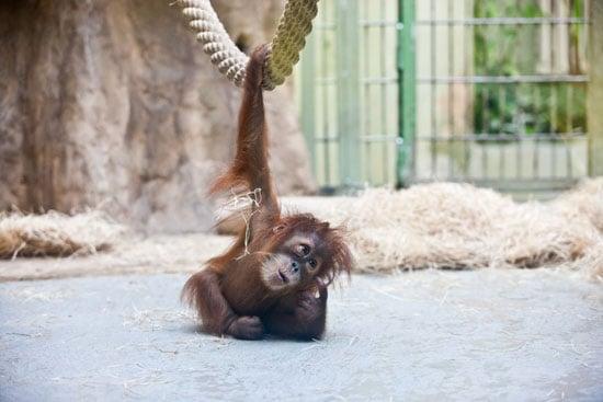 I'm just hanging around and thinking of my next move.