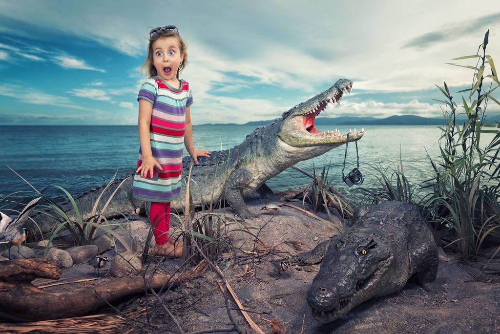 A Croc Ate My Camera