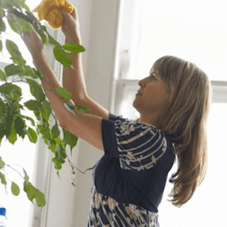 Why Spring Cleaning Can Cause Injuries