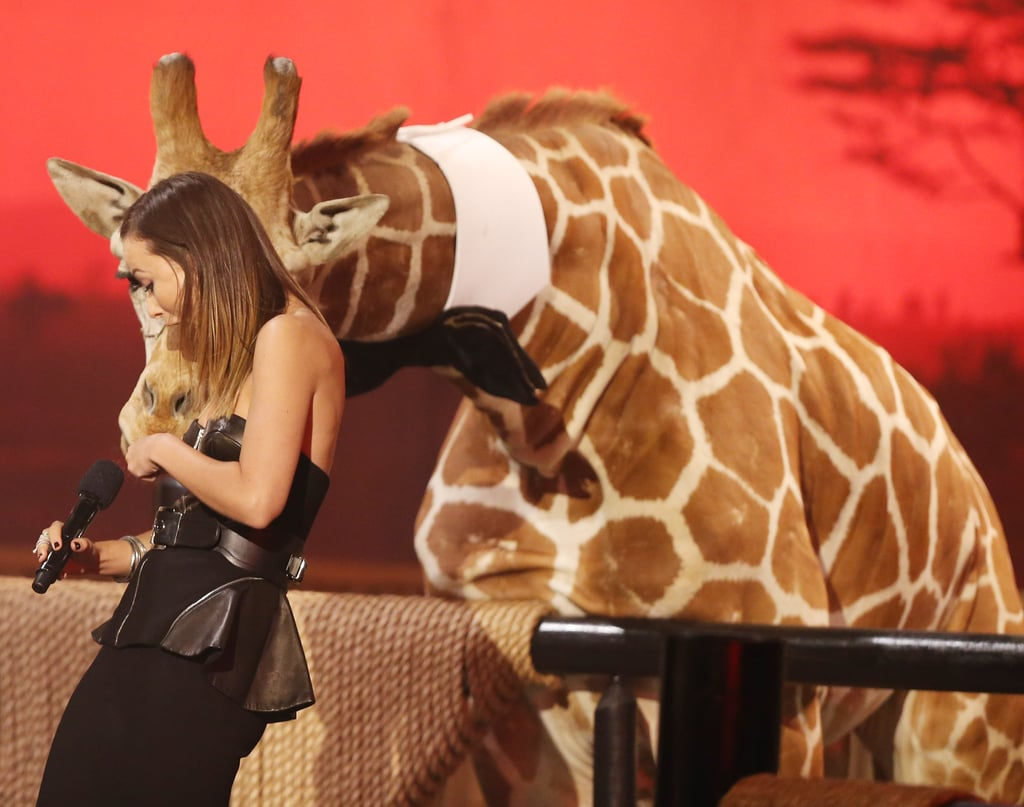 Olivia Wilde had a crazy interaction with Stanley the giraffe in 2013.