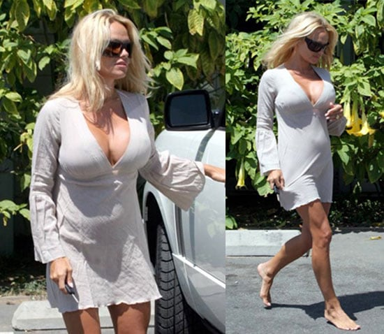 Pam Anderson Will Try Again