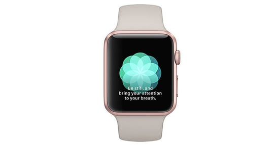 Apple Watch Jumps On the Mindfulness Bandwagon