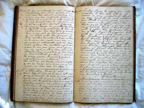 Would You Ever Want Someone to Read Your Diary?