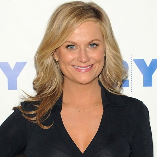 Amy Poehler Responds to a Fan During Her Reddit AMA