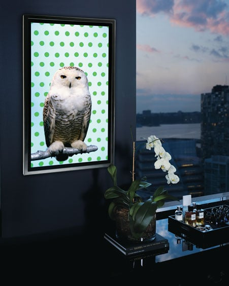 """This """"Snowy Owl"""" by Robert Wilson ($70,000) is for the ultimate art (and owl) fan. Artist Robert Wilson juxtaposed this owl against a cute polka-dot background (perfect for your city apartment), but that's not all. This creature also breathes, blinks, or shifts when you least expect it. Woot, woot!"""