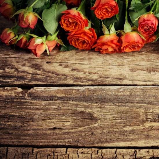 Bridal Friday News For April 15, 2016