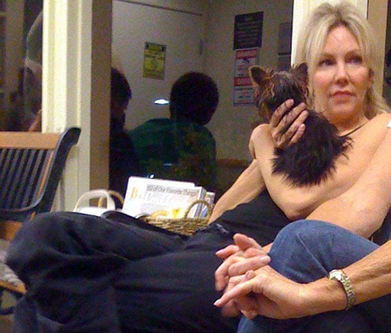 In the Spotlight: Heather Locklear Rushes Yorkie to Clinic!