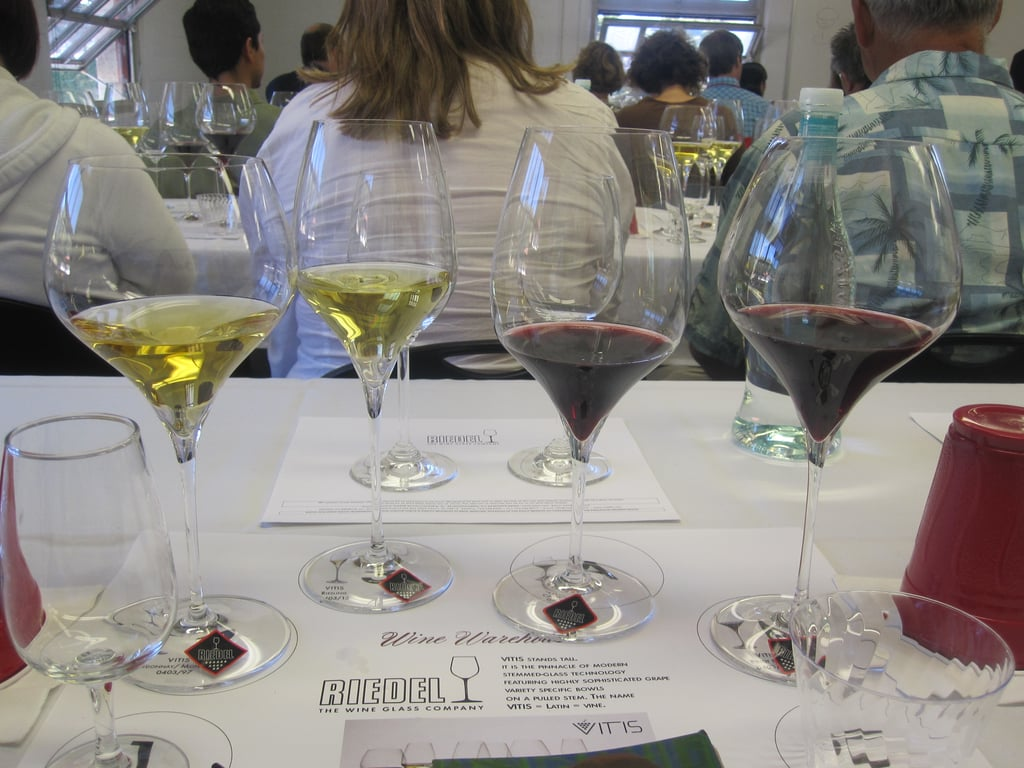 Our four glasses, ready to be tasted.