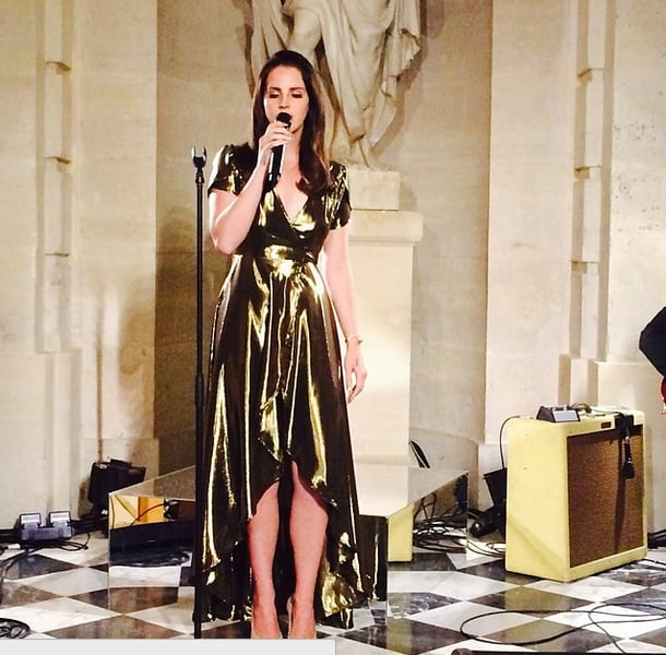 Lana Del Rey performed. Source: Instagram user privategg