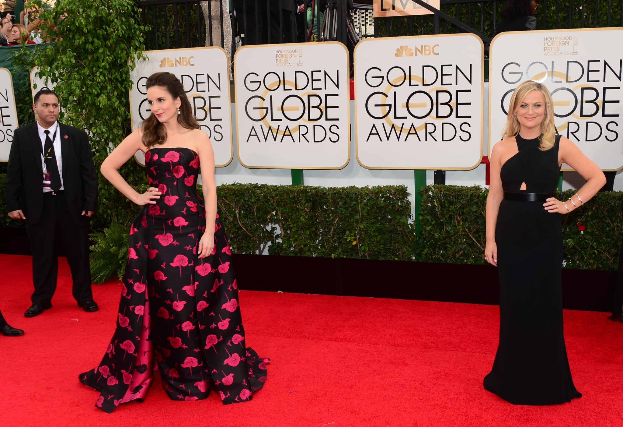 Hosts Tina Fey and Amy Poehler Separated For Solo Shots