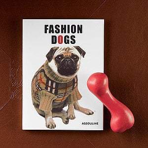 PetSugar's Street Team: Fashion Dogs