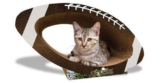 Pampered Pals: Super Bowl Scratcher