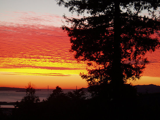 Midday Muse: Supersaturated Sunset