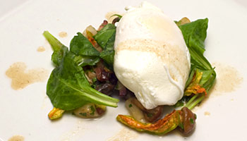 Poached Egg and Wild Mushroom Salad