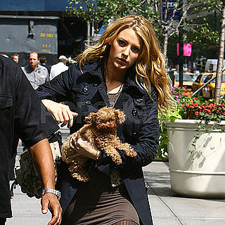 Photo of Blake Lively and Her Dog Penny After Filming Gossip Girl in NYC