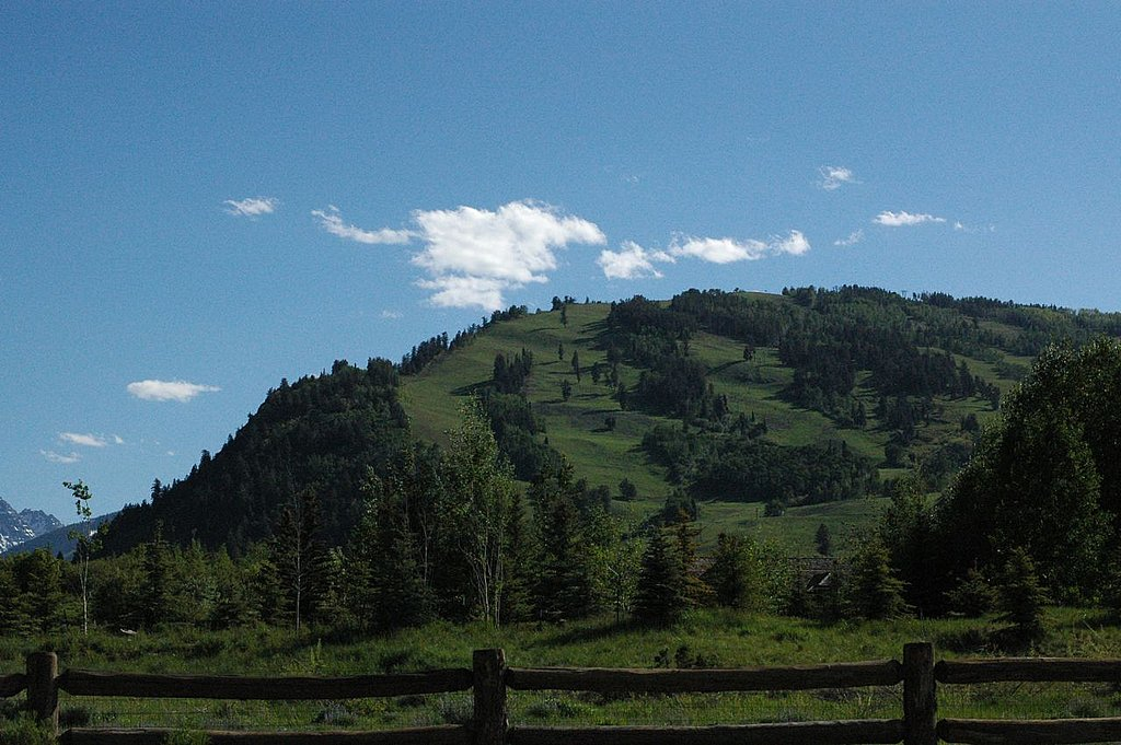 Later in the afternoon, we saw this same pasture filled with elk.