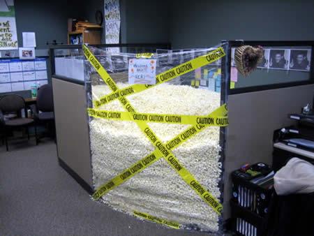 I hope that packing foam is biodegradable.