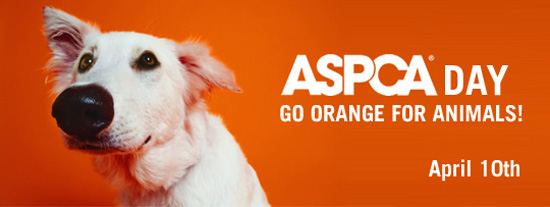 Happy ASPCA Day!