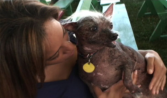 Behind-the-Scenes Video from the 2008 Ugliest Dog Contest!
