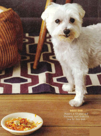 Pet-Friendly Recipe from October's Every Day With Rachael Ray Magazine