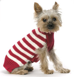 Come PetMarking With Me: Cozy Sweaters
