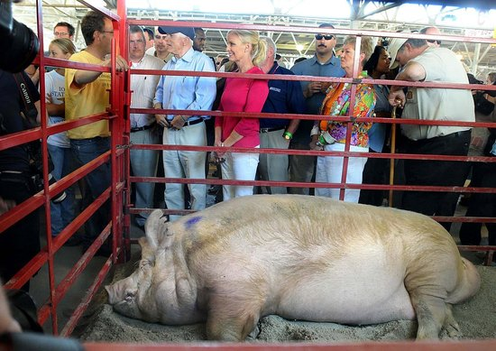 State Fairs Are Going Green