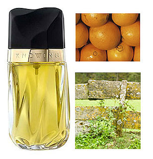 Definition of Chypre
