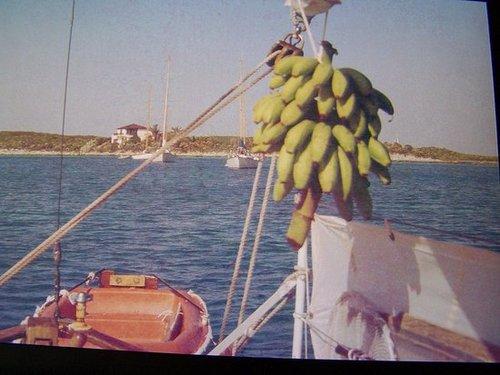Boat Pics - third batch