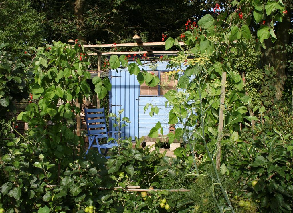Summer Style An English Cottage Garden Popsugar Home