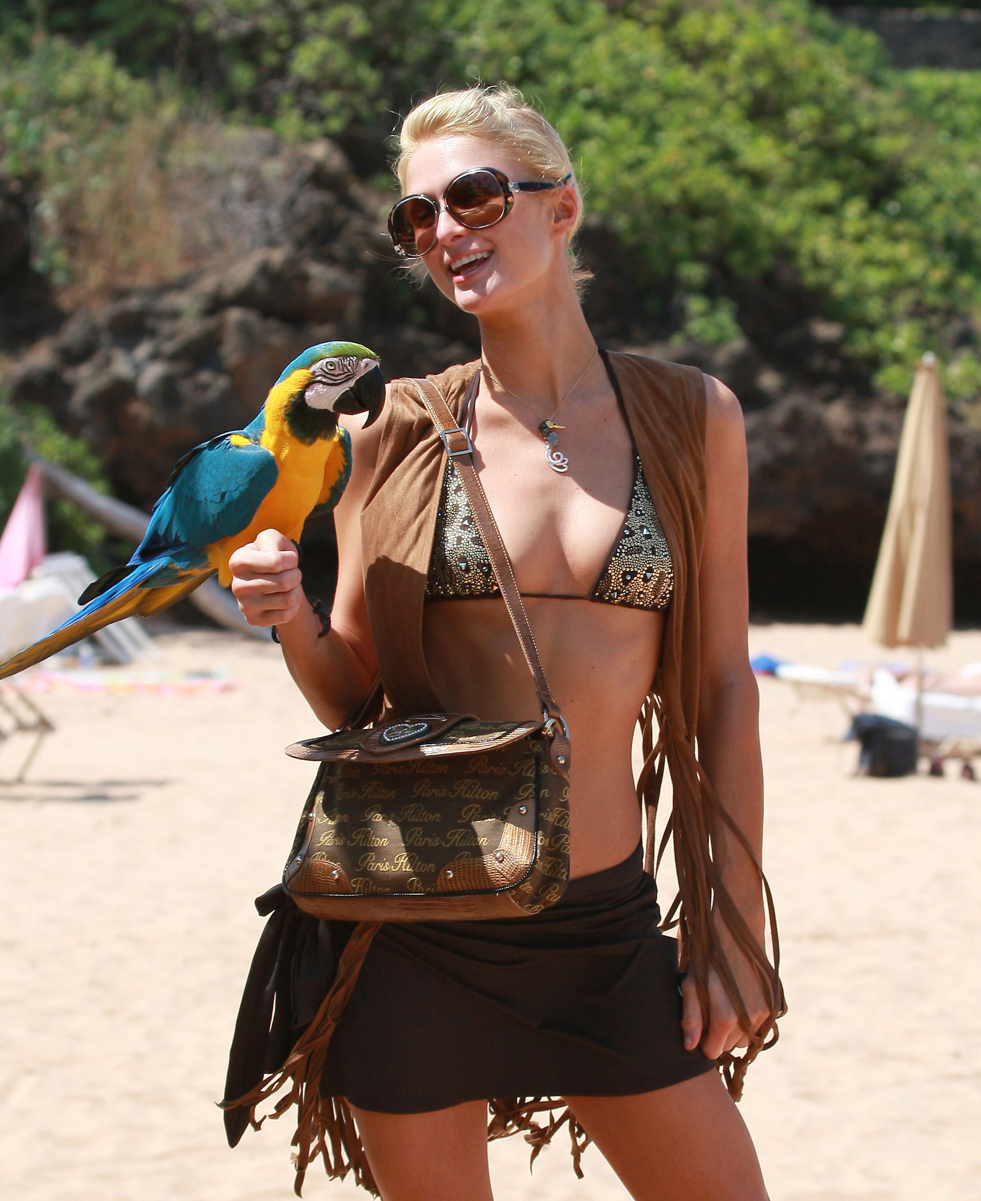 Paris on the Beach With a Parrot