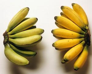 Quiz About Potassium