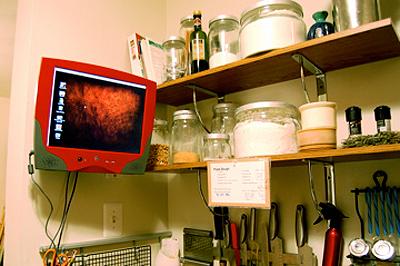 Dream Cooking Scenario: A Computer in the Kitchen