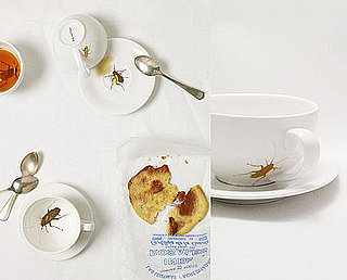 Roaches Cup and Saucer: Love It or Hate It?