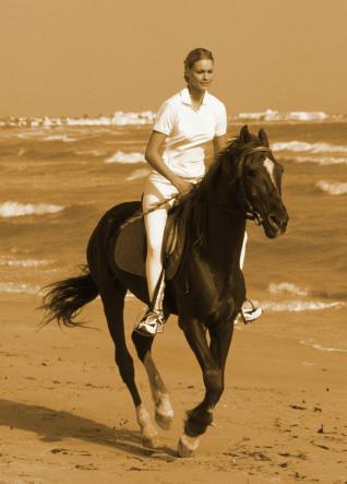 Ever Been Horseback Riding?