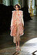 Milan Fashion Week, Spring 2008: Roberto Cavalli