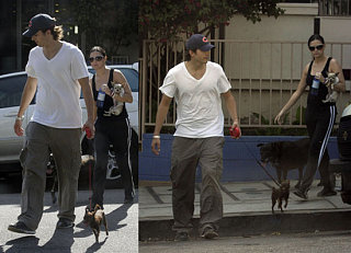 Ashton and Demi Let The Dogs Out