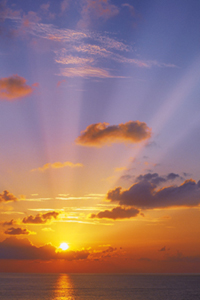 Strike a Yoga Pose:  Sun Salutation A