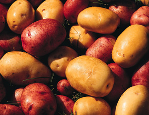 5 Things: Go Organic With These Foods