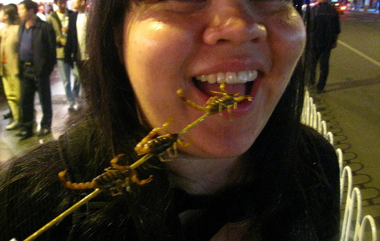 Would You Eat a Scorpion?