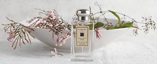 Coming Soon: Jo Malone White Jasmine and Mint Cologne