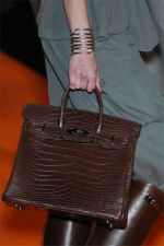 Hermes Spring 2008 (The Bag Snob)