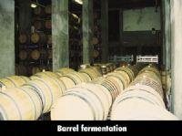 Robertson Winery