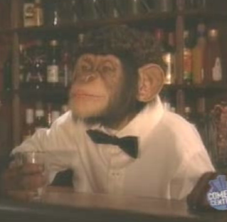 Time For A Monkey Joke!