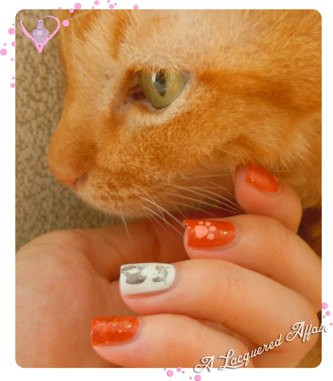 Prevention of Cruelty to Animals Nails & Orange cat