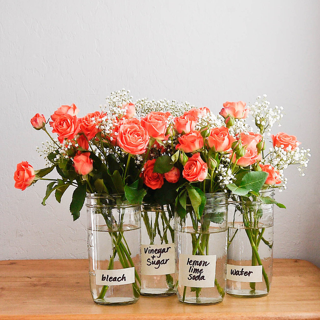 How to make flowers last longer popsugar smart living mightylinksfo