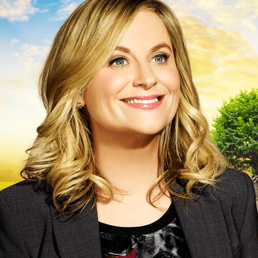 Best Leslie Knope GIFs