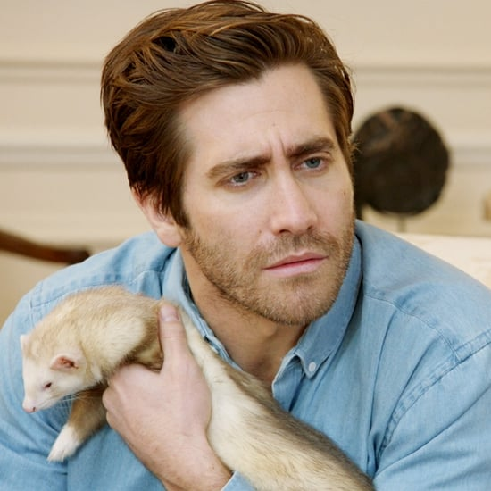 Amy Schumer Catfishes Jake Gyllenhaal | Video