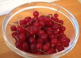 Simple, Four-Ingredient Recipe For Red Currant Raspberry Granita 2009-09-24 11:12:40