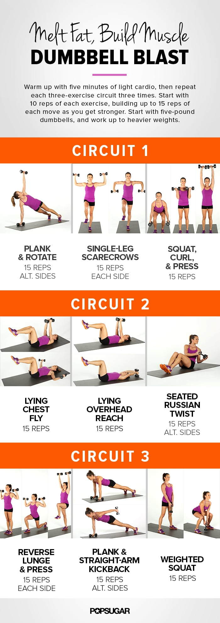 Melt Fat Build Muscle Dumbbell Blast Circuit Workout