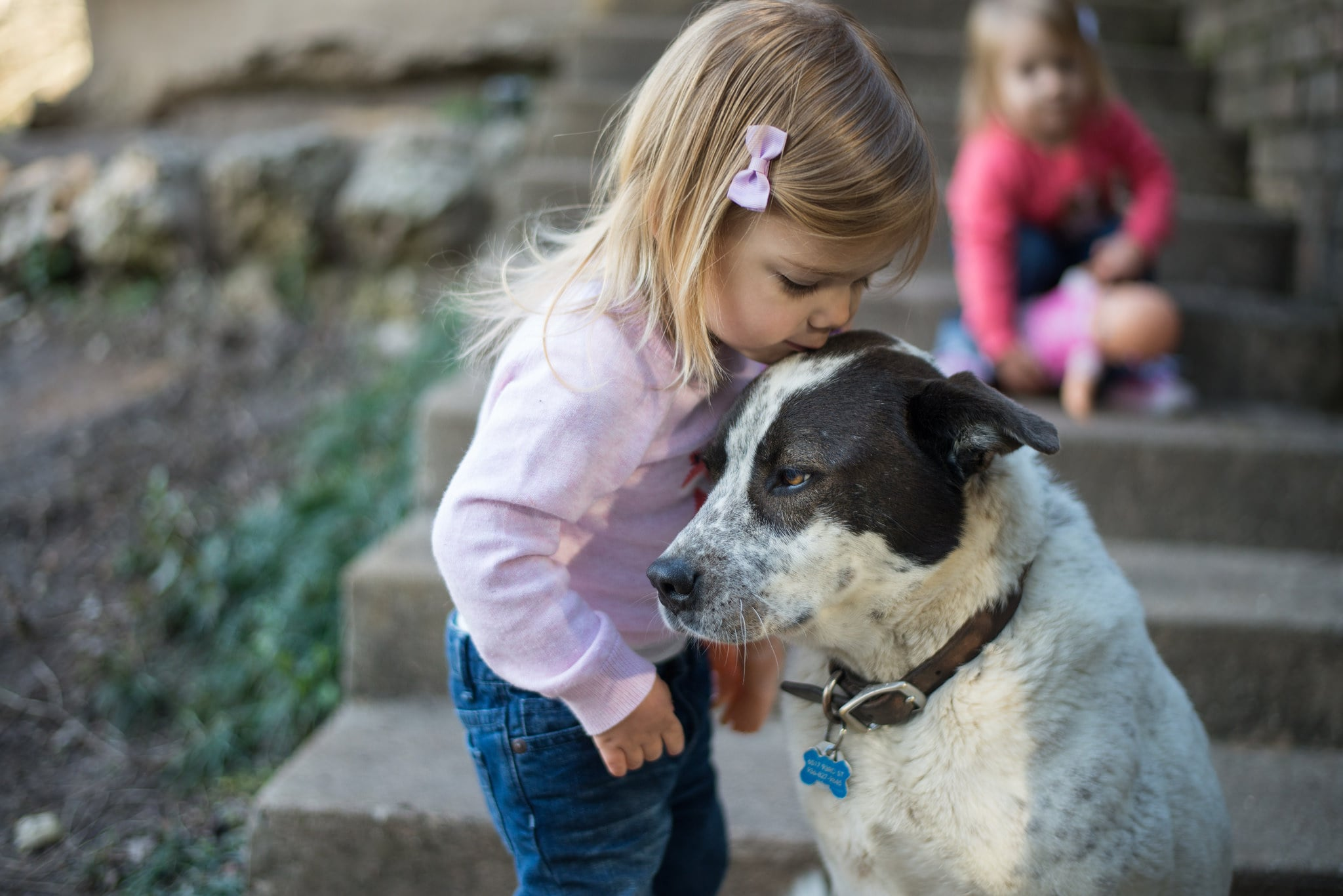 pets or children Here are all the pros to getting pets when you have children, including reducing stress and health problems, reducing loneliness and having fun.
